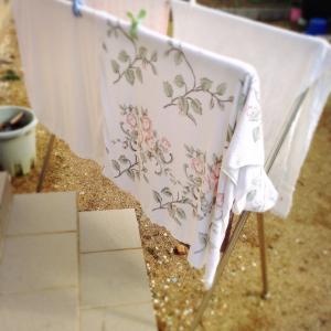 睡眠不足には洗い立てガッサガサのタオルケットが一番だった件。