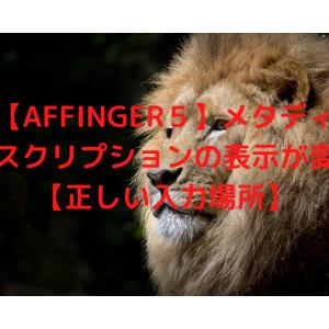 【AFFINGER5】メタディスクリプションの表示が変【正しい入力場所】