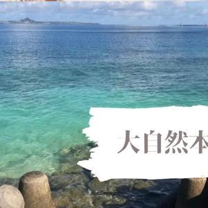 【沖縄北部】沖縄で自然を満喫したいなら本部町!海が綺麗な本部町のオススメ&穴場を紹介!