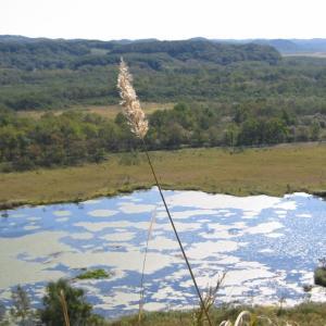 秋の釧路湿原 バスツアーピカリ号で行く摩周湖・阿寒湖・硫黄山