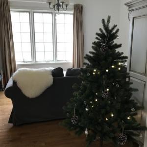 クリスマスツリー と ホビーラさんのスラブコットン