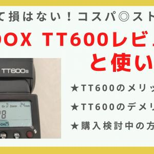「GODOX TT600」のレビュー&使い方解説!【コスパ抜群】