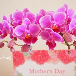自分に、母の日のプレゼント♪