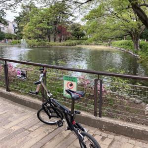 桃園川・妙正寺川(2021年4月)