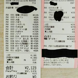 9月の食品2(¥2,423月累計¥5,210)