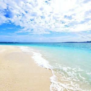 真心ブラザーズ 真夏の砂浜