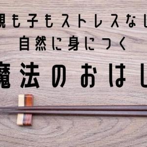 エジソン箸からステップアップ「はじめてのちゃんと箸」使用レビュー