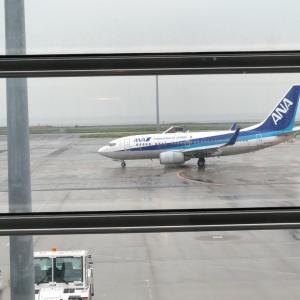 【GoToトラベル】コロナ影響で起きた空港の変化