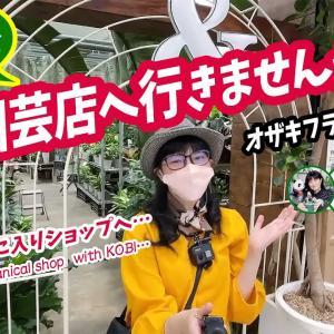 KOBIと一緒に園芸ショップへ行こう・オザキフラワーパーク編【くまパン園芸】