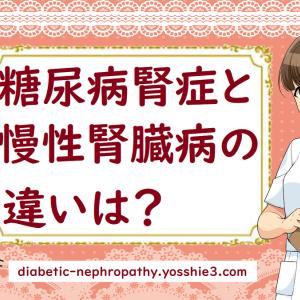 糖尿病腎症と慢性腎臓病の違いは?