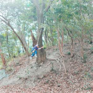 自然の森で子供達と戯れる