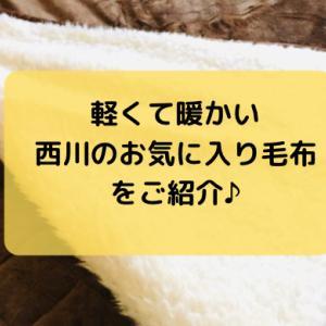 軽くて暖かい西川の毛布口コミ!とろふわの手触りが最高。敷きパッド付