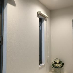 +1家事+ 片開き窓網戸掃除