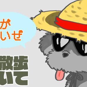 【夏】犬の散歩をしてもいいのかは、○○して判断!