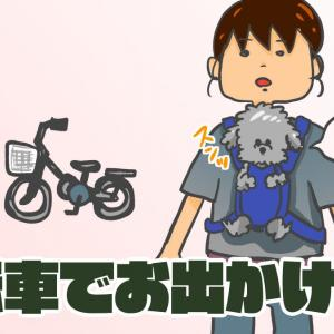 犬と自転車でお出かけしたい!愛犬に合ったスタイルで出かけよう!