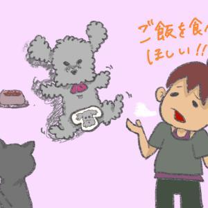 犬が何故か餌(ご飯)を食べてくれない!5つの疑われる原因と試したいこと