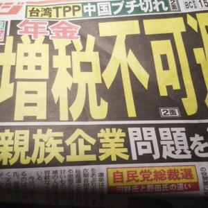 河野太郎日本、亡国論。経団連の利権を狙い、消費税減税造成をもっともらしい、発言で実行しようとした