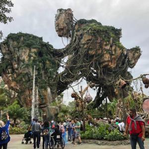フロリダへの旅!2019年クリスマス休暇③〜Disney's Animal Kingdom Theme Park〜