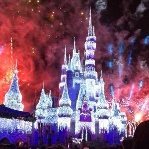 フロリダへの旅!2019年クリスマス休暇⑤〜Magic Kingdom Park〜