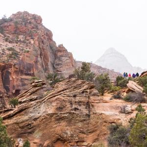 【ラスベガスから自然の世界へ】ザイオン国立公園を大満喫!〜2020年12月〜