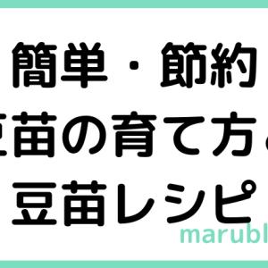 野菜が高い時はコレ!簡単節約レシピ〜豆苗編〜