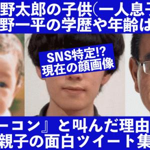 河野太郎の子供(一平)の学歴や年齢は?慶応藤沢でベーコンと面白ツイート