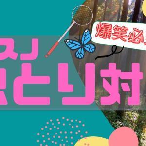 それスノ#18予告動画&番組レポ【爆笑!虫×Snow Man】