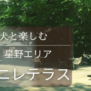 【軽井沢ハルニレテラス】犬と一緒の楽しみ方&付近の遊べるスポット