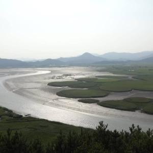 広大な順天湾自然生態公園を満喫