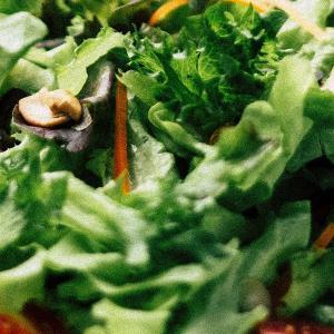 ほうれん草の栄養はやっぱりすごい!【健康】
