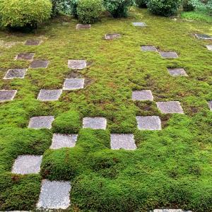 冬枯れの東福寺