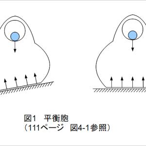 佐々木正人「アフォーダンス入門」第四章メモ2