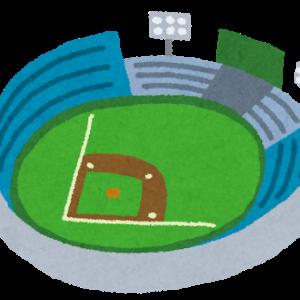 大きな野球盤、これならいろんな子どもが楽しめそう