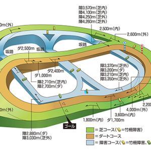 競馬場のコースや特徴を勉強しよう 中山競馬場編