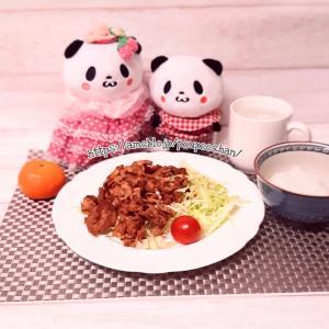 【ぬい撮り】おうち夜ごはん!豚肉の味噌炒め