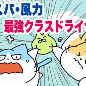【SALONIA】5,000円で購入できる強風ドライヤー【時短家電】