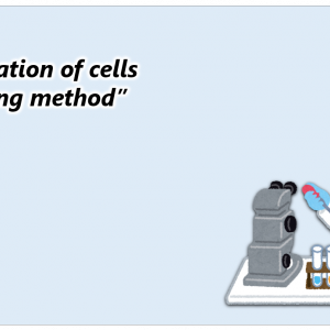 "【vol.9.5】Cryopreservation of cells ""Slow freezing method"""
