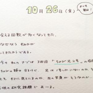 ねこねこ日記①2001.1026