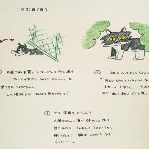 ねこねこ日記③2002.1.20