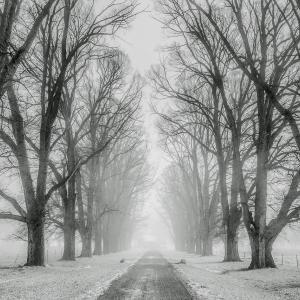 大学生の冬休みに行きたい旅行先5選!冬の国内旅行はここで決まり!