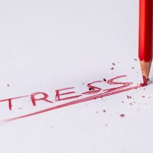 本『ストレスゼロの生き方 心が軽くなる100の習慣』Testosterone