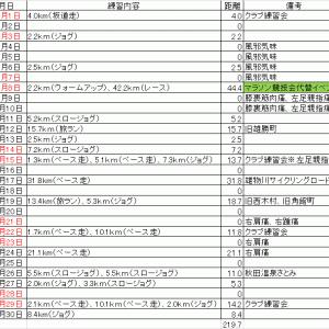 コーちゃんのランニング日誌(2020年11月分)