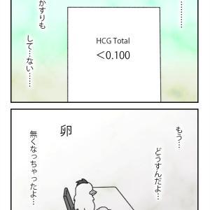 【不妊治療 73】2回目移植の判定日_01