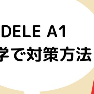 【独学でDELE A1】作文~読解まで使える勉強法と問題集まとめ
