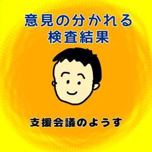 全然違う発達検査の見解〜支援会議〜