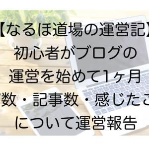 【なるほ道場の運営記】初心者がブログの運営を始めて1ヶ月 PV数・記事数・感じたことについて運営報告