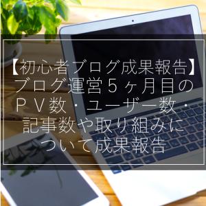 【初心者ブログ成果報告】ブログ運営5ヶ月目のPV数・ユーザー数・記事数や取り組みについて成果報告
