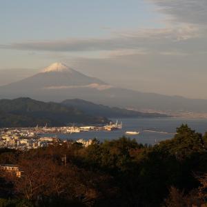 雪の富士山!