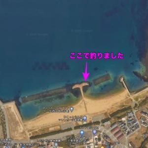 下関市彦島のひこっとランドマリンビーチでキスを狙ってみたけど・・・(^_^;