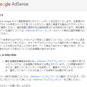 AdSenseサイト運営者向けポリシー違反レポート…を貰ったらどうすれば良いのか?